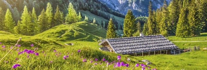 Bildergalerie –Blankgut in Wagrain - Bauernhofurlaub im Salzburger Land
