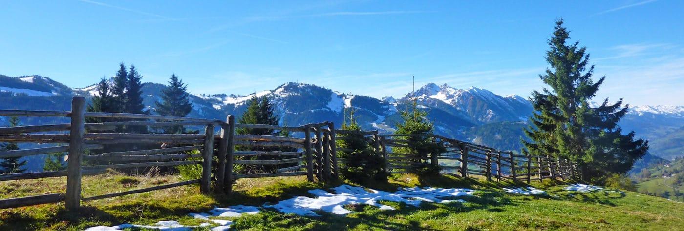 Ausblick vom Blankgut auf die Berge im Salzburger Land